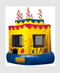 Birthday Cake Jumper-Premium