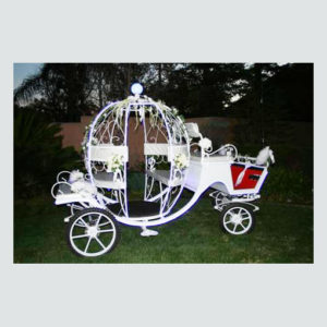 Cinderella-Carriage