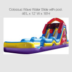Colossus-Wave-Water-Slide-with-pool