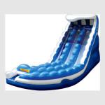 Double Curve Wet-Dry Slide