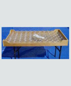 Fish Bowl Tabletop Game