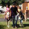 ponies2a