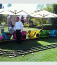 Tiny-Tot-Train-1