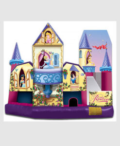 Disney Princess Combo Jumper 3D 5-in-1