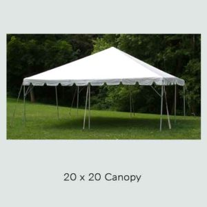 20' x 20' Canopy